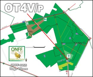 ONFF255_0001
