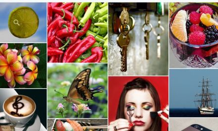 10 Best Free jQuery Image Gallery Plugins