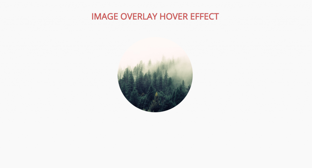 circular hover effect