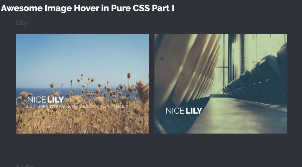 Awesome image hover effects examples