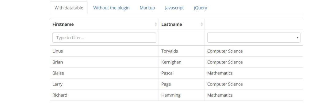 javascript plugin