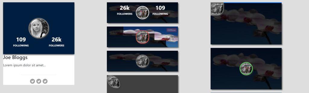 profile design examples