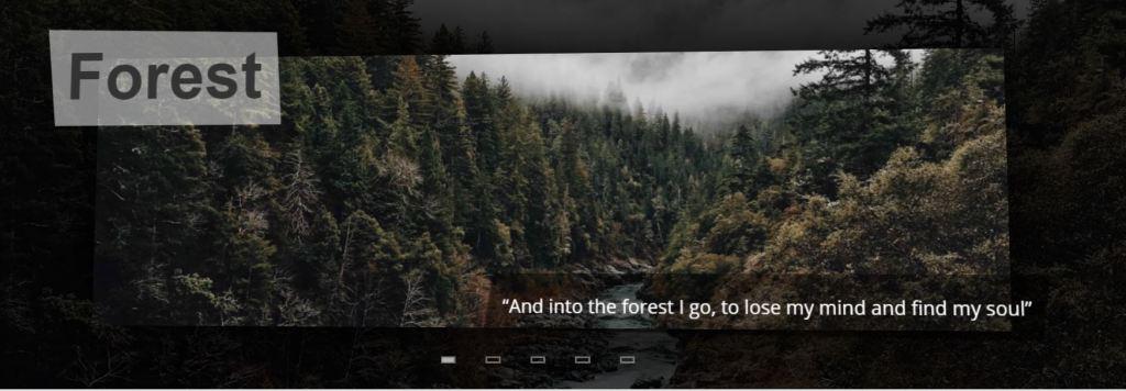 Zoom image slider