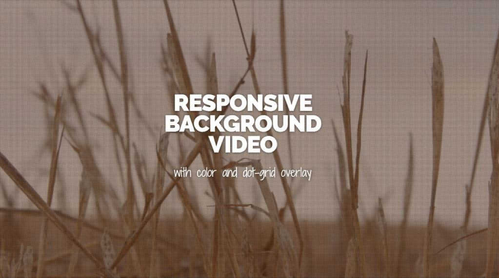 HTML5 responsive background video