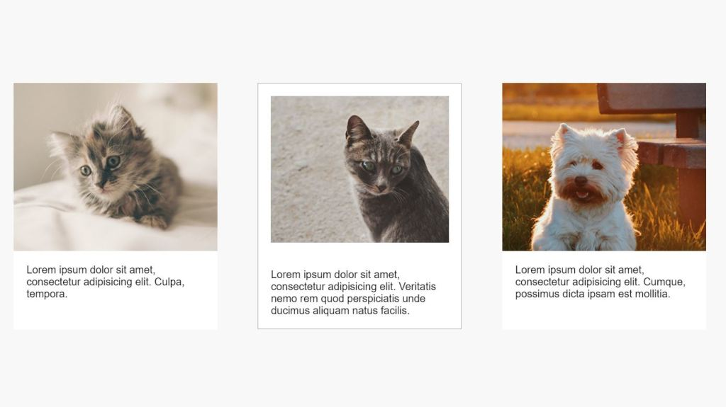 Bootstrap 4 HTML CSS card hover effects example