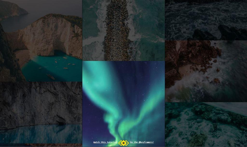 JS FLIP Image Grid Gallery