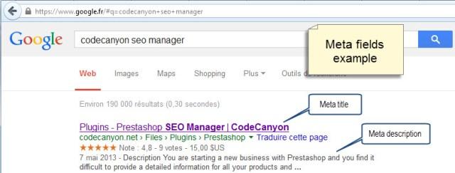 Google SERP and Meta title and Meta description
