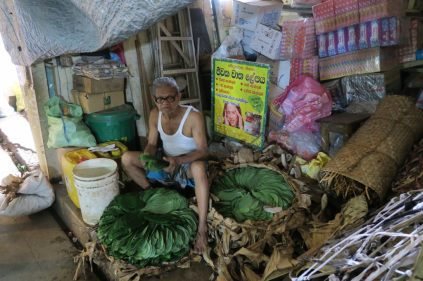 Marché de Kandy - préparation du betel