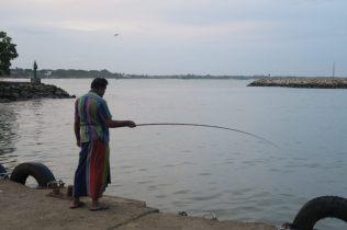 Pêcheur à la ligne, port de Tangalle
