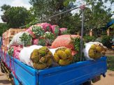 Marché de gros du fruit, Dambulla