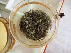 Feuilles de thé blanc vierge, vendues 1500 dollars le kilo