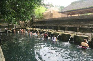 Piscines d'eau sacrée au temple Tirta Empul (première piscine, sur la gauche)