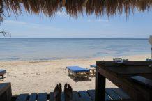 Posés sur la plage, dans une petite cahute fournissant une ombre providentielle...