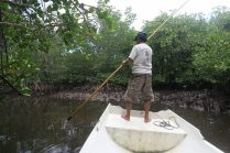Notre pêcheur/guide dans la mangrove