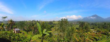 Panorama des rizières de Jatiluwih, avec les montagnes en arrière plan