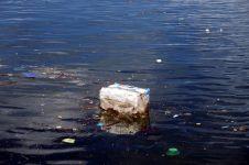 Déchêts flottant à la surface