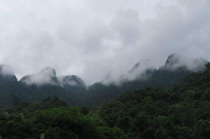 Pas de soleil, mais pas de pluie ! La brume sur nos premiers paysages