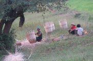 Des tresseurs de paniers (en bambou)