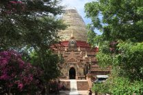 Dhammayazaka Zedi et ses jardins fleuris