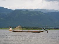 Un pécheur et de sa nasse sur le lac Inle
