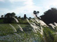 Paysage à Inwa