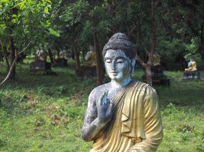 "Un Buddha de la ""Buddha valley"""