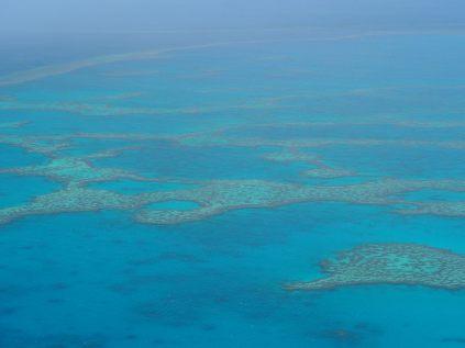 Les récifs de la barrière