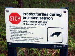 Panneau d'information interdisant l'accès à la plage la nuit lors de la saison de reproduction des tortues