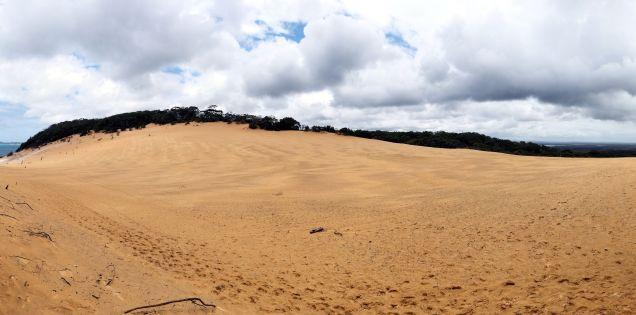 """Panorama du Sandblow Carlo (la ligne d'horizon à l'air """"tordue"""" mais c'est la dune qui fait cela !)"""