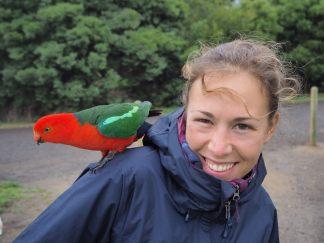 A Kennett River, un perroquet se pose sur Elise aussi