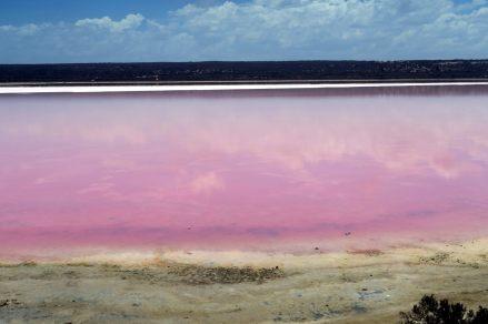 """Le """"pink lake"""" !"""