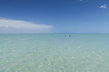 L'eau translucide de Shell beach