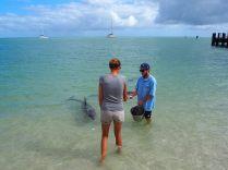 Elise choisie comme volontaire pour nourrir un dauphin !