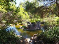 Jardins botaniques du King's park à Perth