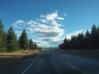 Sur la routeSur la route entre le lac Tekapo et Pukaki