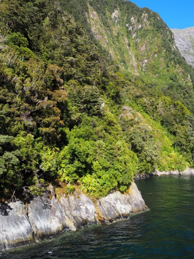 Vue sur les parois du fjord plongeant dans l'eau