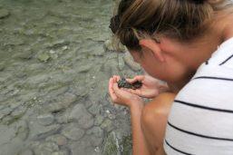 Elise cherche de l'or (à la main !!) dans la rivière Arrow