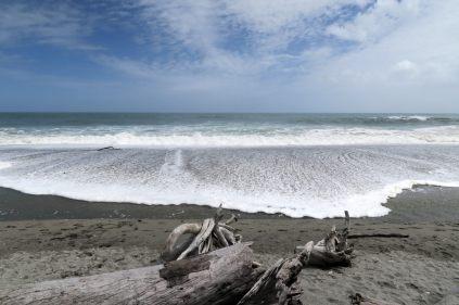 La plage noire de la mer Tasman sur la côte Ouest