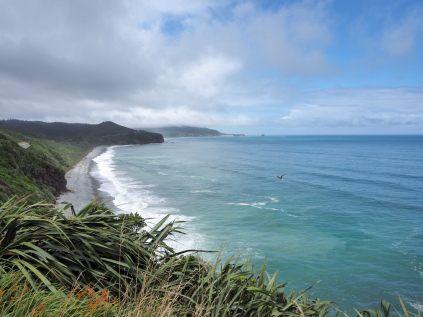 Sur la route le long de la côte Ouest. La mer et la forêt tropicale.
