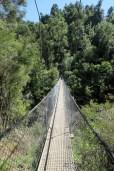Un pont de singe lors de la randonnée au Parc national d'Abel Tasman