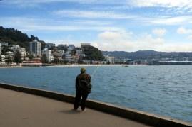 Wellington, au bord de la mer...