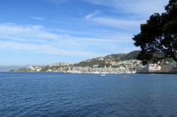 Vue sur le port de Wellington depuis les Docks