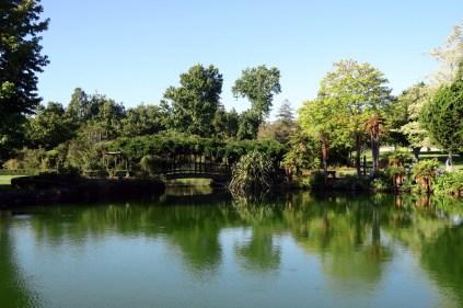 Le parc thermal Kuirau à Rotorua