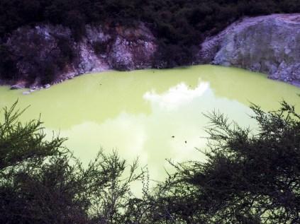 Devil's pool, Wai-o-tapu. Les petits points noirs au dessus de l'eau sont des hirondeles venues festoyer