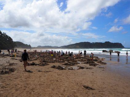 """Mais qui sont tous ces gens qui creusent des trous sur la plage ? Bienvenue à """"How Water Beach"""" !"""
