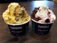 Test des glaces de chez Rapa Nui