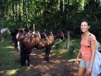 Un gaucho a amené des clients en rando à cheval à la cascade