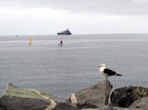 Valparaiso est le principal port de la marine Chilienne