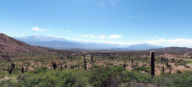 Panorama de la Cachi Pampa dans le parc national Los Cordones