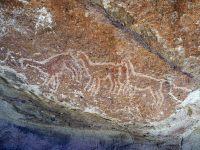 Pétroglyphes de Yerba Buena, des lamas
